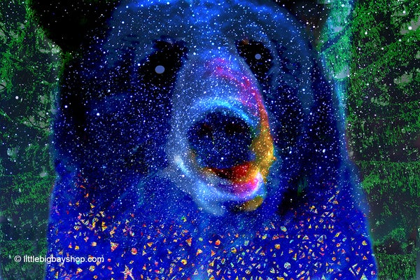 Image of Bear with Blue Eyes