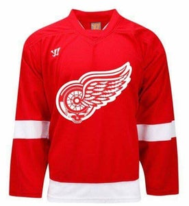 Image of Grateful Wings Jersey