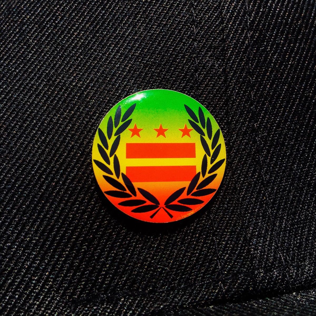 Image of Rasta DC Flag Laurel Wreath Pin