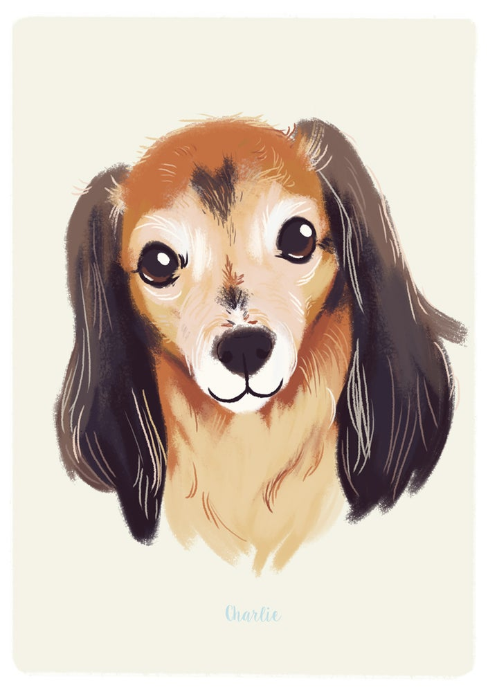 Image of Pet Portrait - the Perfect Gift