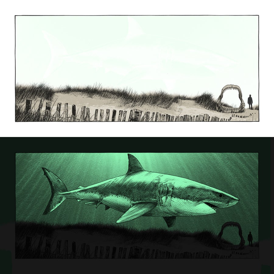 "Image of ""What Once Was - Megalodon"" - only 2 left!"