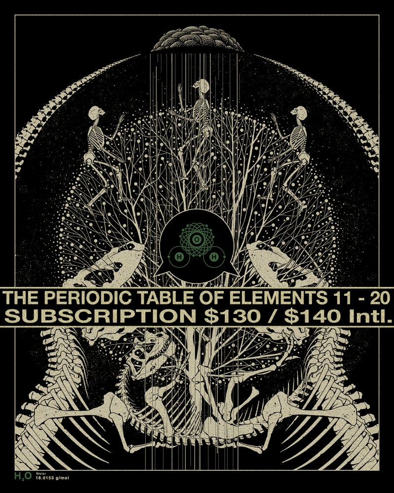 Image of SUBSCRIPTION TO ELEMENTS 11 - 20