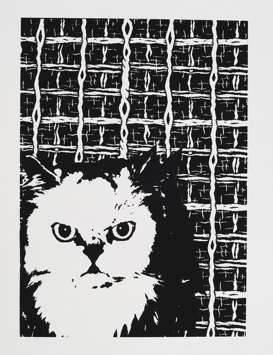 Image of Cat Print