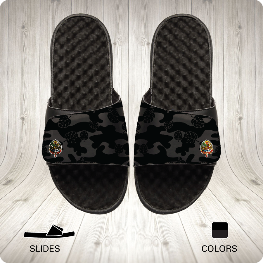 Image of CAMO - Slides