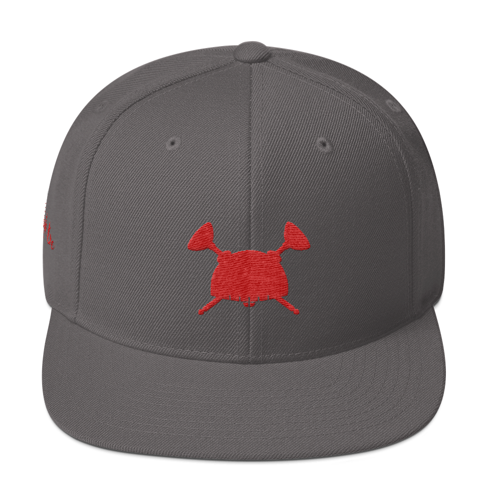 Image of Dream Hero Snap Back Dark Gray Red
