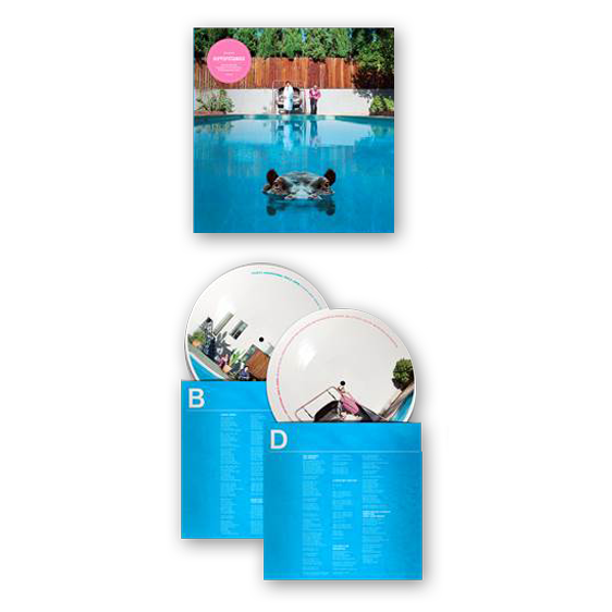Image of Hippopotamus Double Picture Disc LP