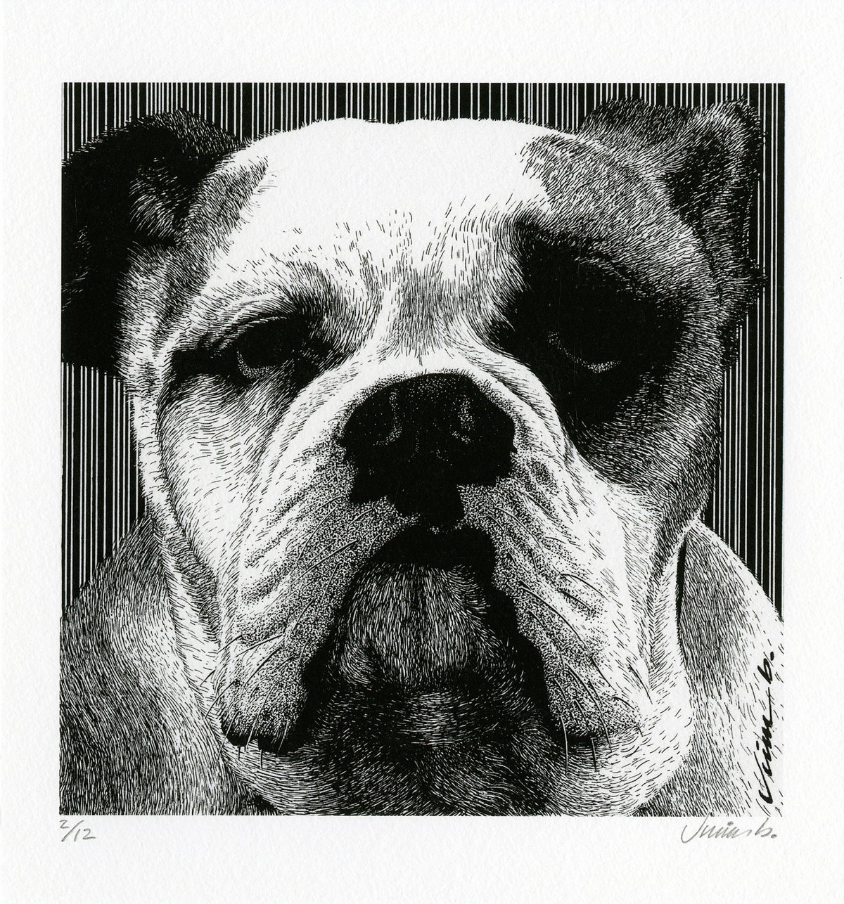 Image of HEY BULLDOG giclée print