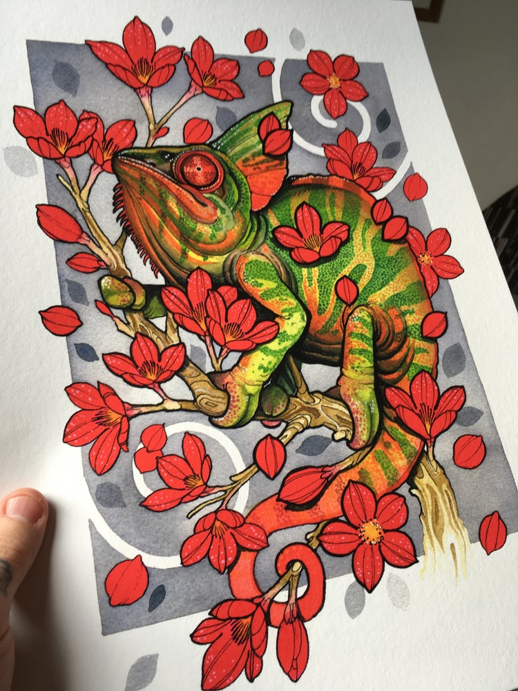 Image of A3 chameleon