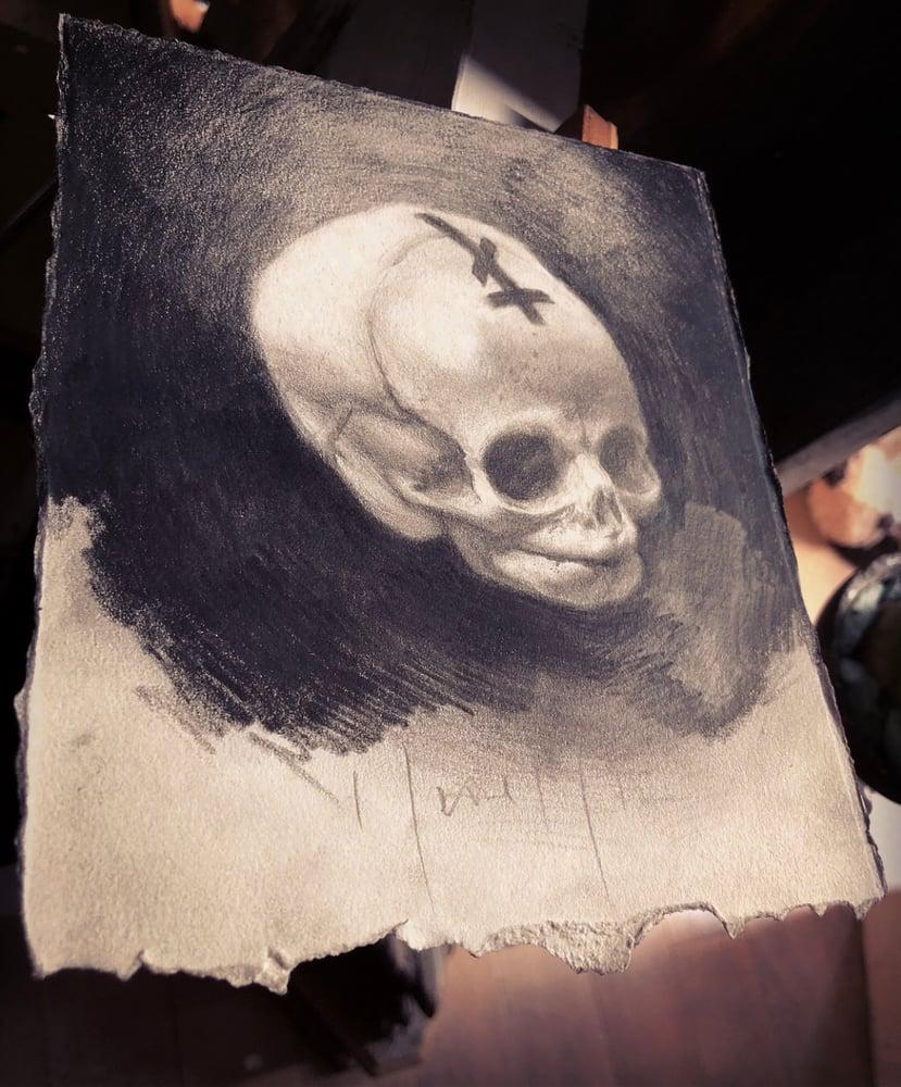 Image of 'AELIUS' { Foetal Skull } - Original Artwork