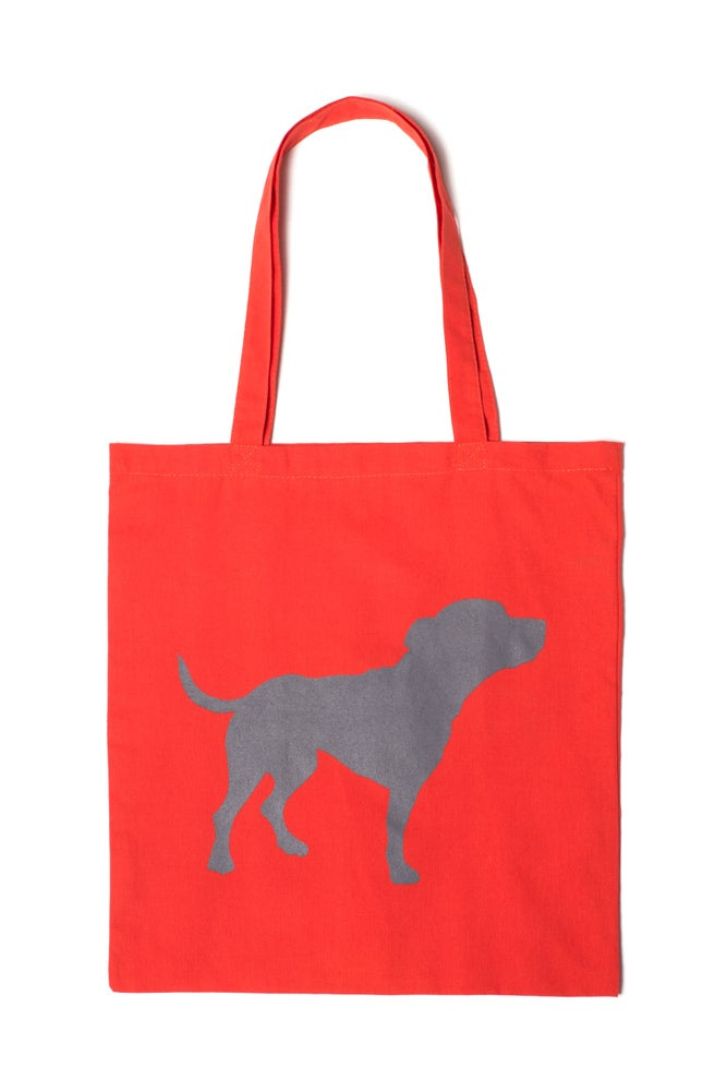 Image of orange tiny tim tote