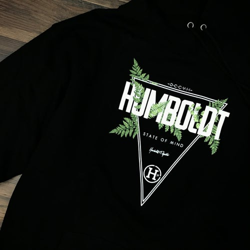 "Image of ""Fern Canyon"" Men's Pullover Hoodie"