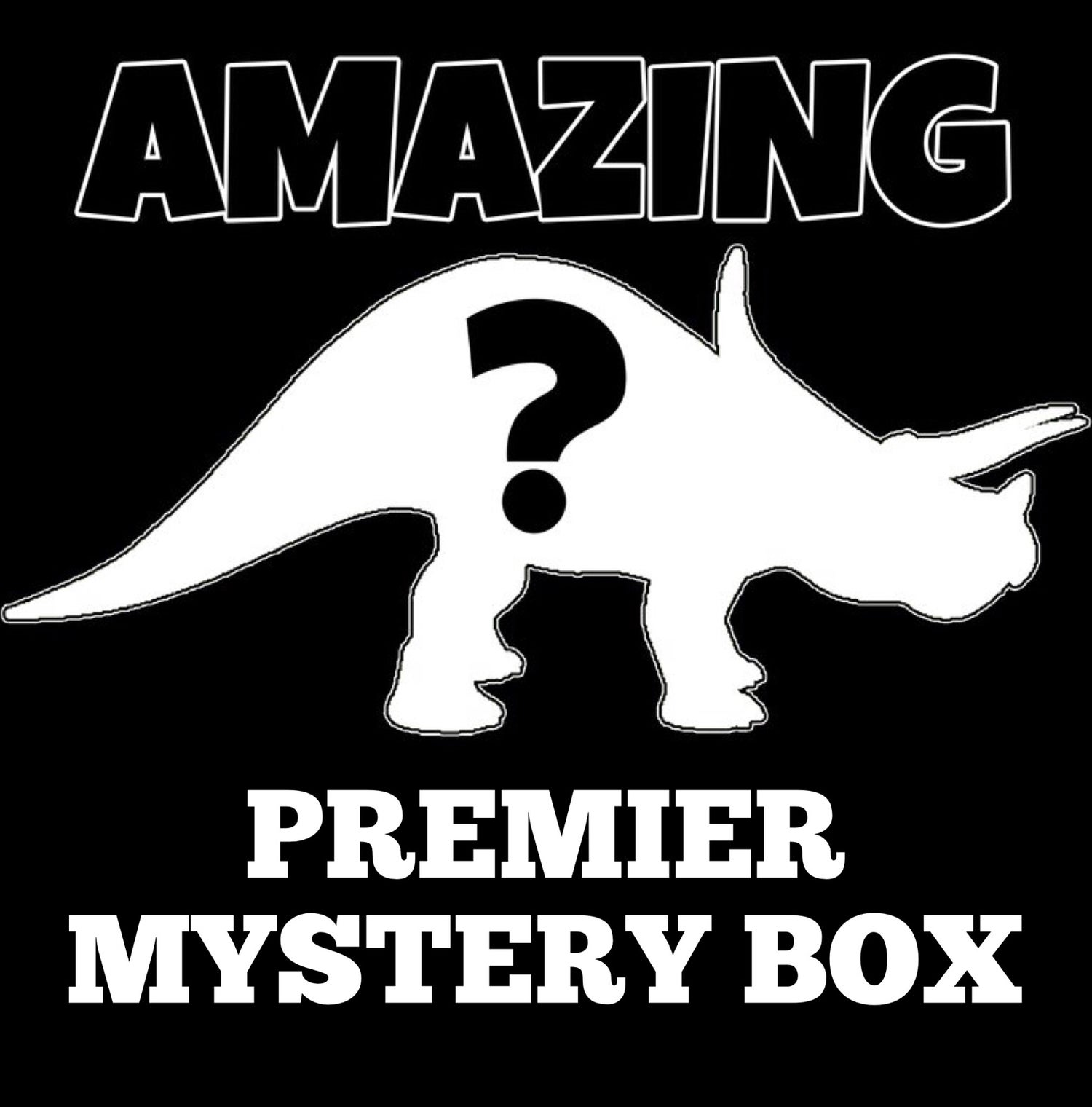 Image of AMAZING PREMIER MYSTERY BOX