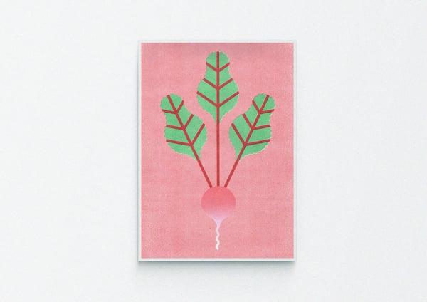 Image of A3 Risograph Radish print
