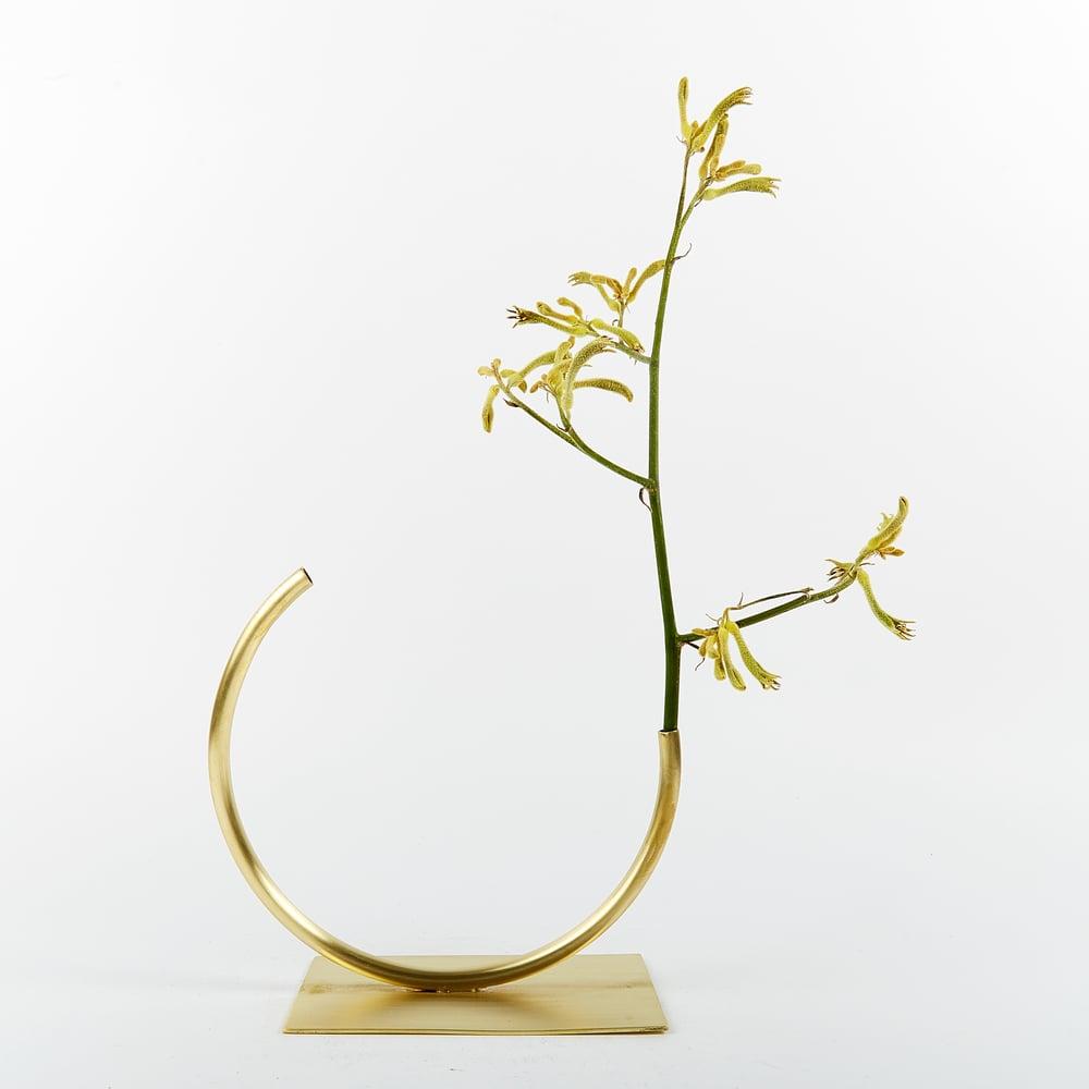 Image of Vase 428 - Edging Over Vase