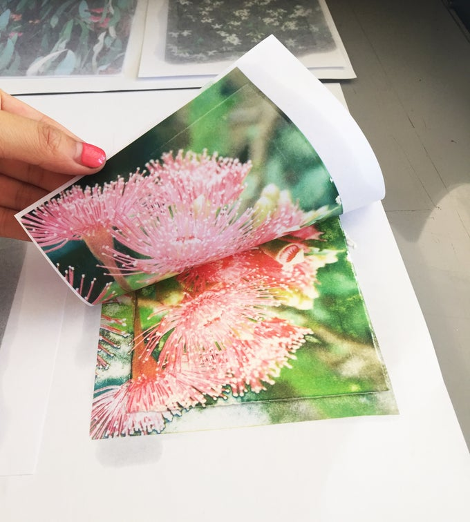 Image of Pigment Transfer 2.00pm - 6.00pm