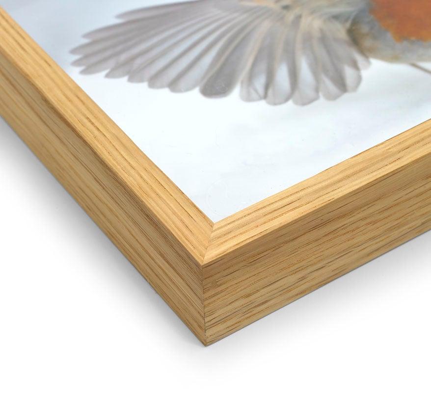 Image of Oak Framed Print