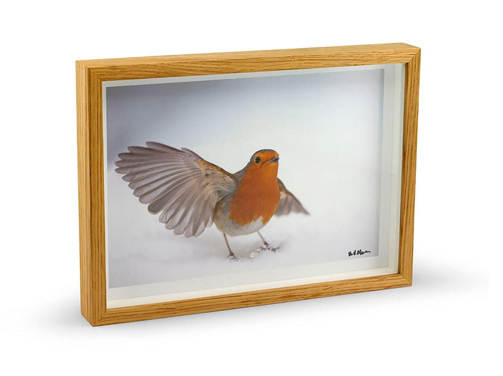 Image of Oak Framed Print