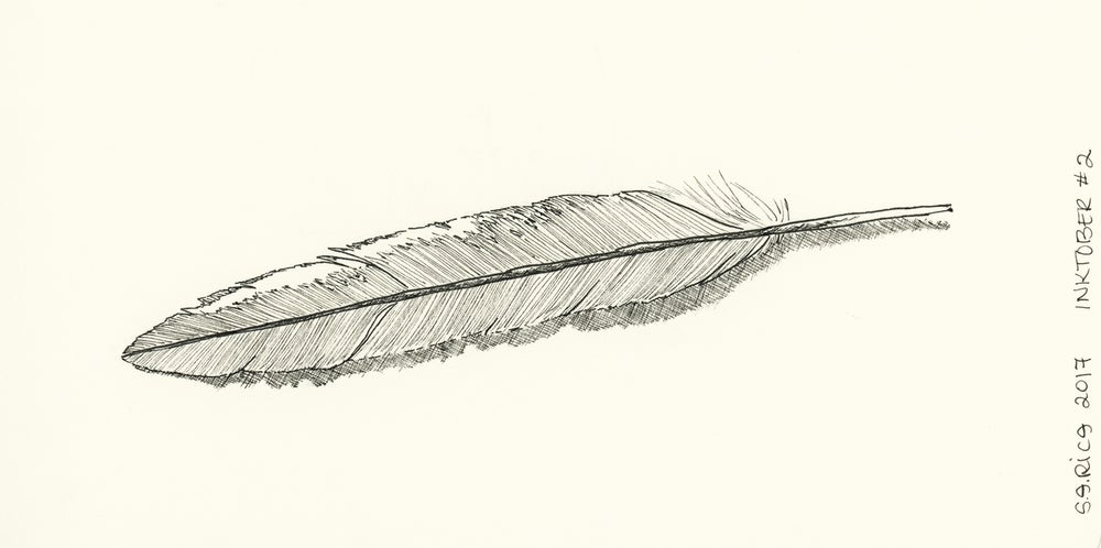 Image of Inktober #2 - Feather