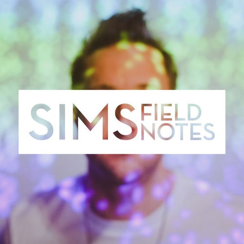 Image of Field Notes - Sims
