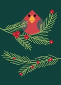 Image of Holly Jolly Evergreen Bird Holiday Greeting Card - New!