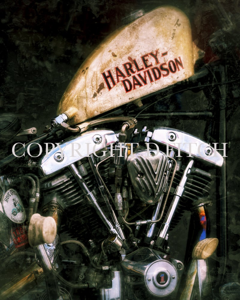 "Image of ""Harley 2"" Signed Print"
