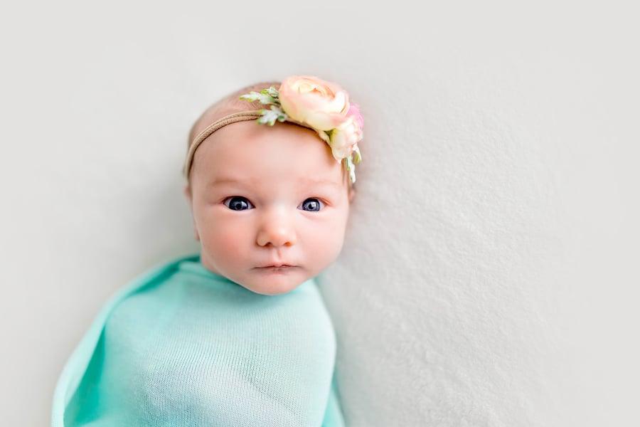 Image of Posed Newborn Session