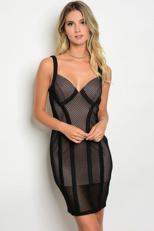 Image of Black & Nude Mesh Dress