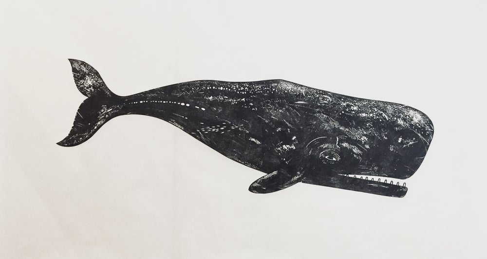 Image of Whale II