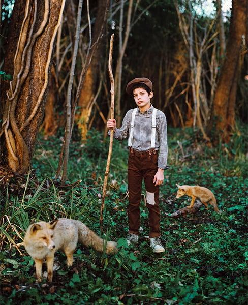 Image of Eliott et les renards