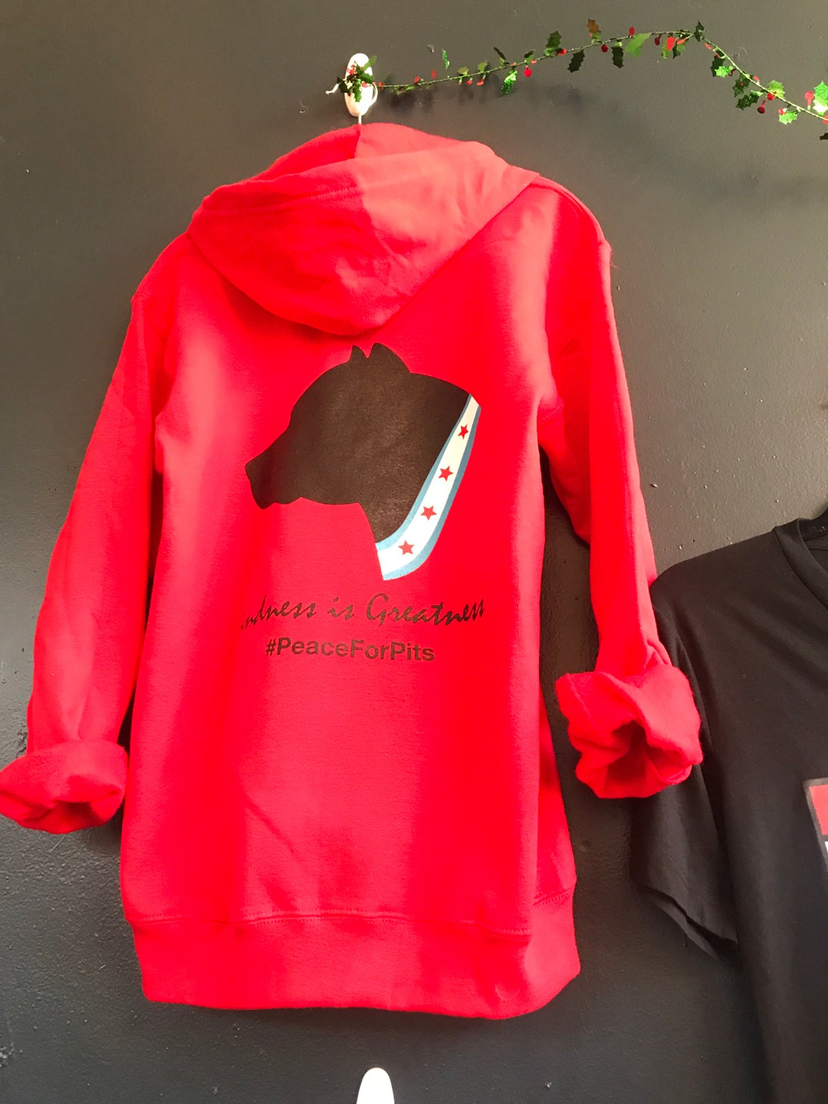Image of Kindness is greatness Red Zip up