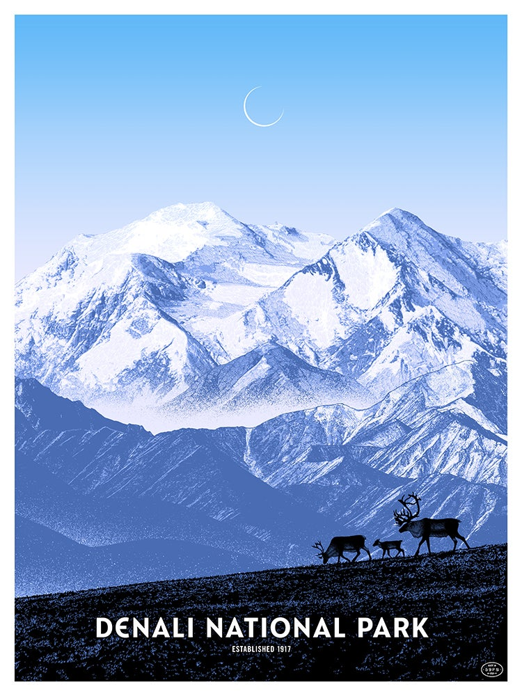 Image of Denali National Park - DAY - only 3 available