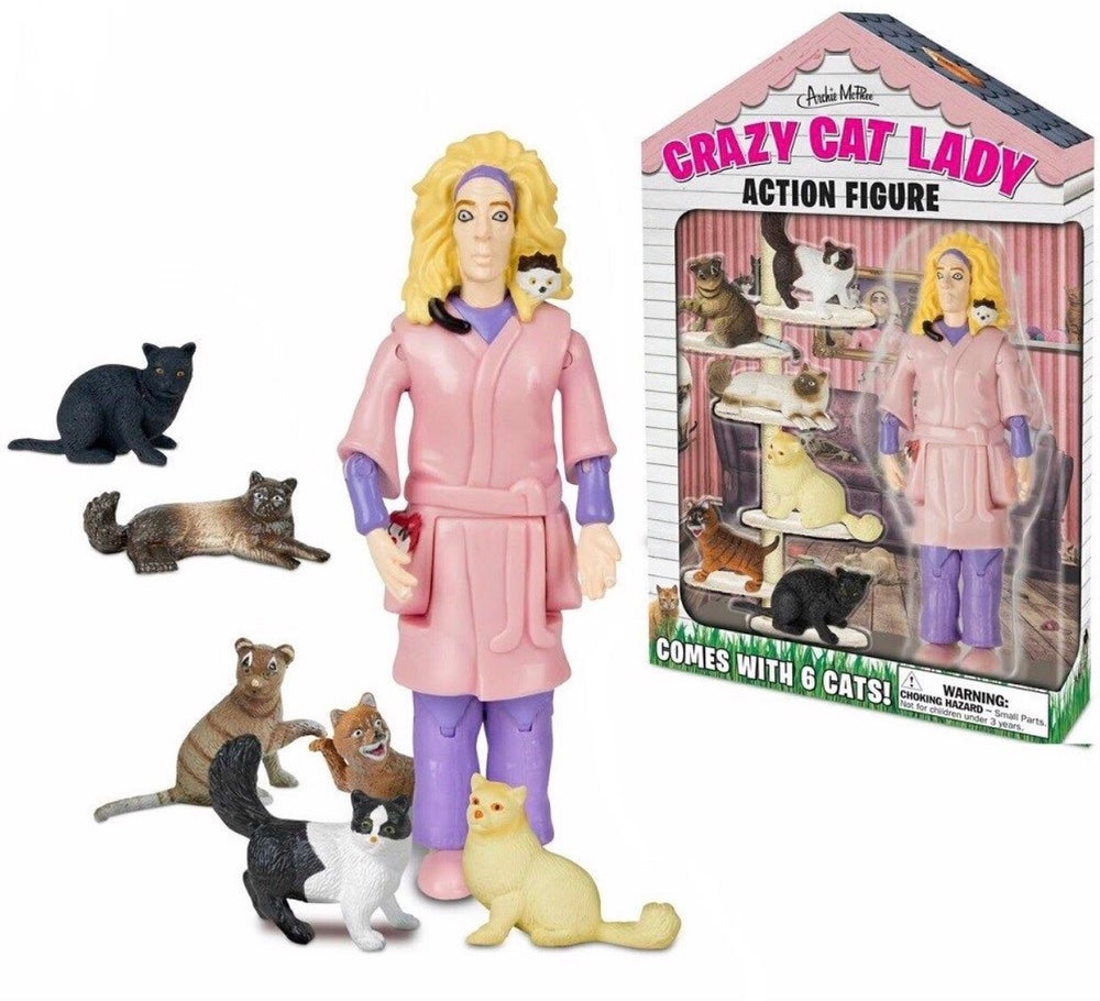 Image of Crazy cat lady