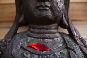 Image of NOW AVAILABLE IN PRINT - Sacred Statue Single Petal