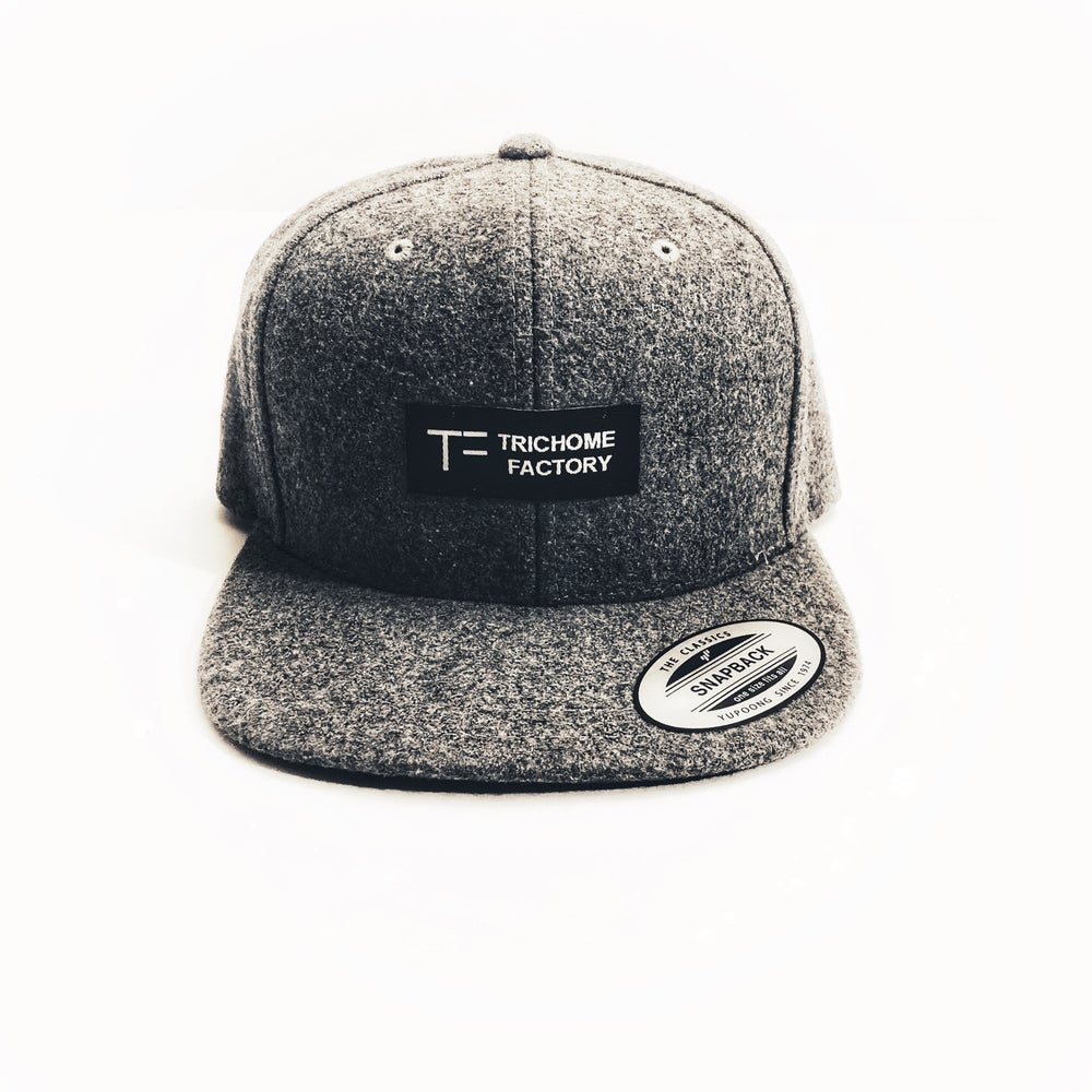 Image of Throwback Wool SnapBack