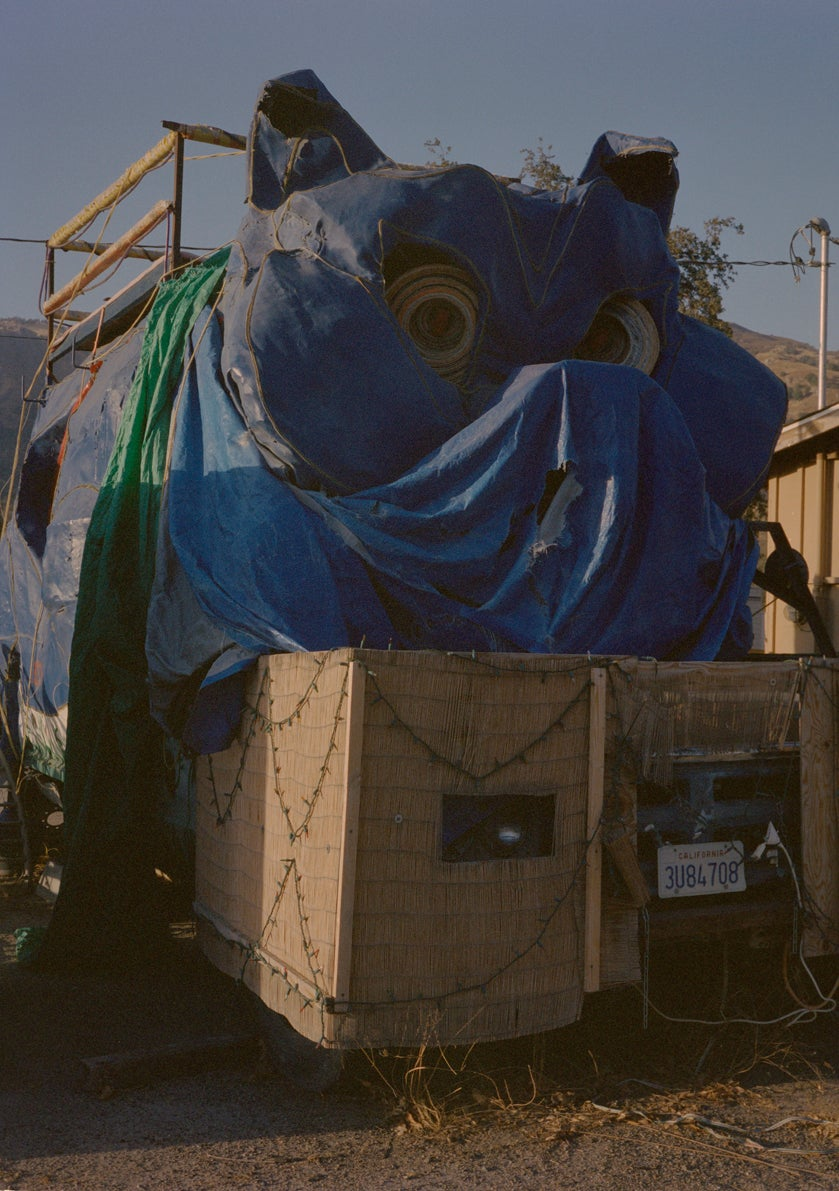 Image of GONZO, ThreeRivers CA 2013