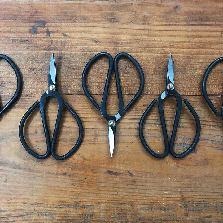 Image of Bonsai-style scissors