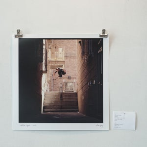 "Image of walker ryan - ollie - brooklyn, new york - 12"" x 12"" print"