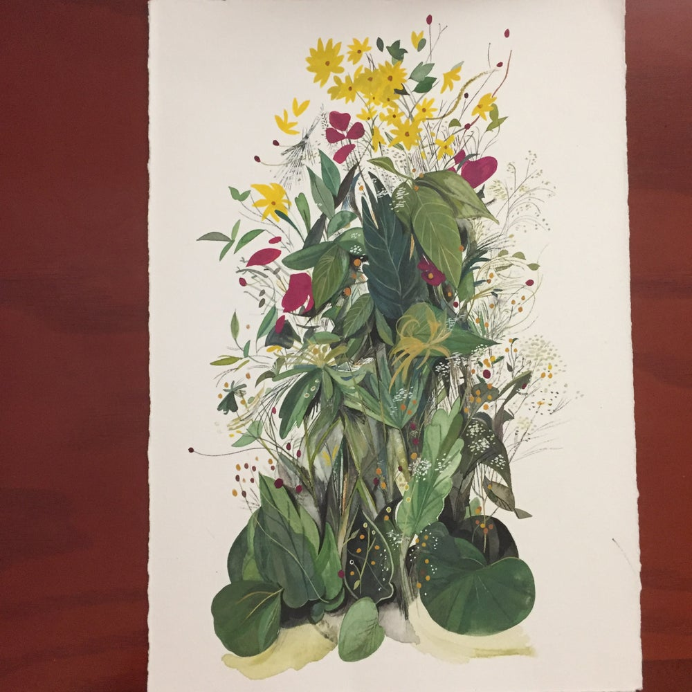 Image of Original Plant Study II