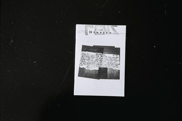Image of REVS diaries  // Diarios de REVS