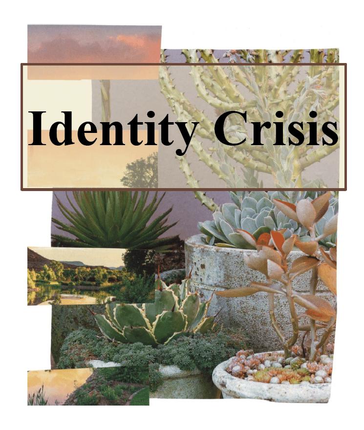 Image of Identity Crisis zine