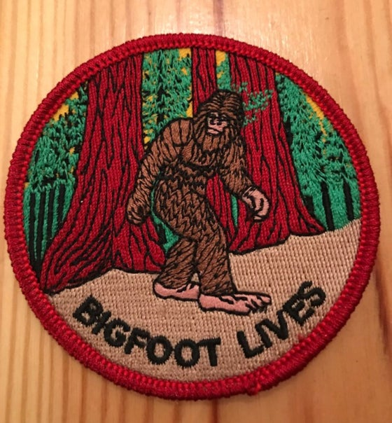 Image of Bigfoot lives