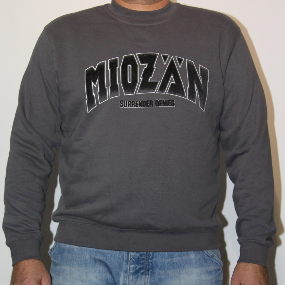 Image of SWEAT SHIRT