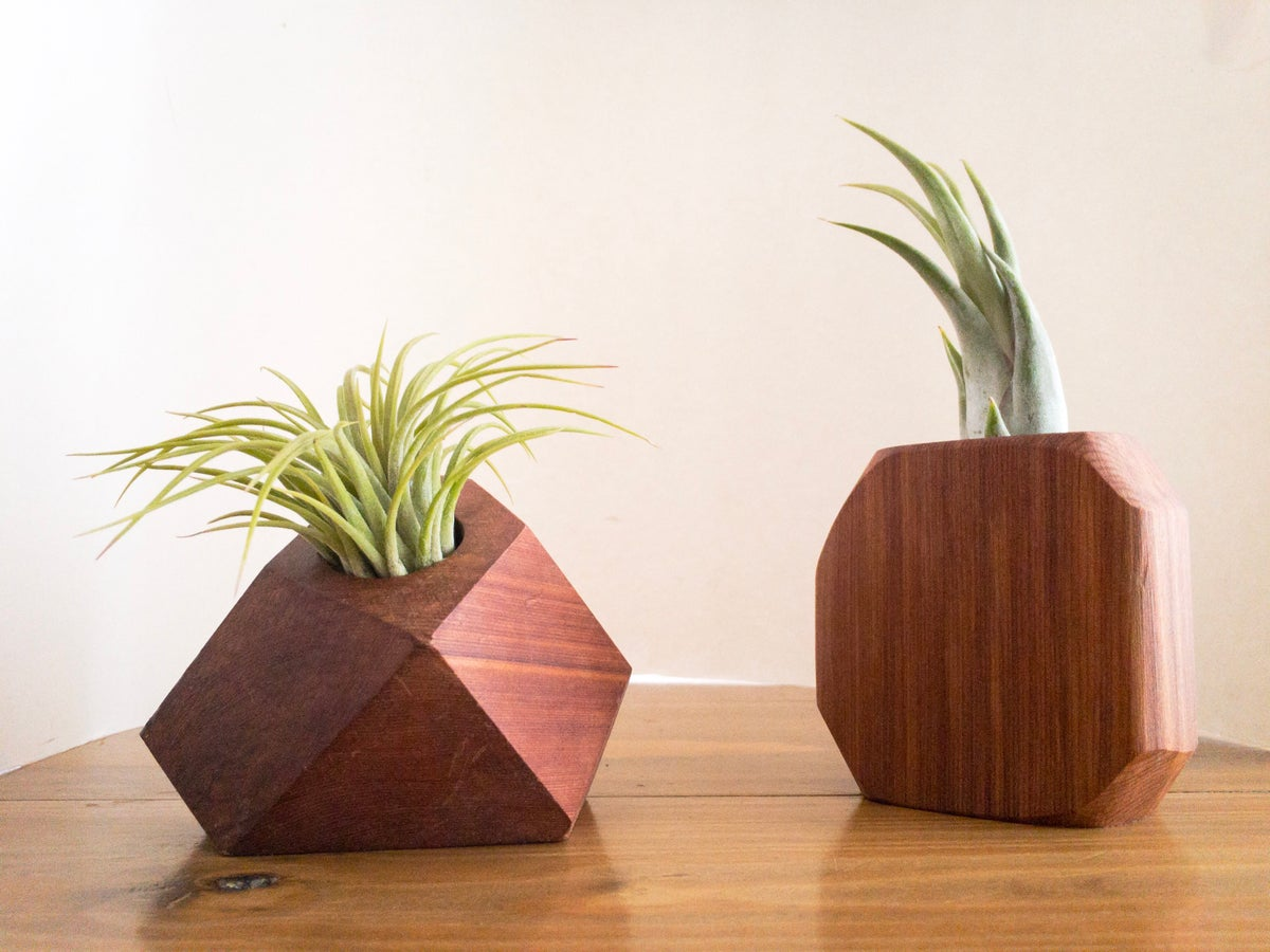 Image of Faceted Wood Cedar Air Plant Holder