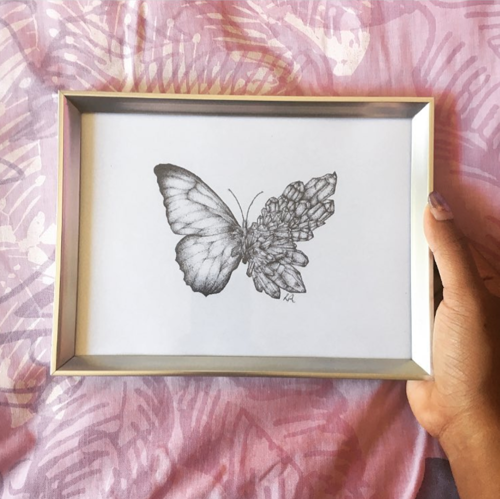 Image of Metamorphosis Butterfly