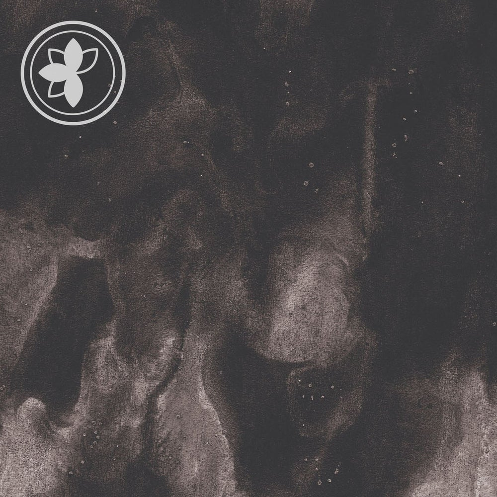 Image of Druse - The Way That We Ache / Target Weight Collection LP