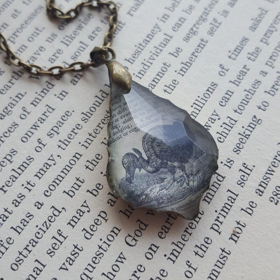 Image of Dodo Bird Antique Book Illustration & Repurposed Chandelier Crystal Necklace