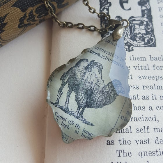 Image of Camel Vintage Dictionary Illustration & Slavaged Chandelier Crystal Necklace
