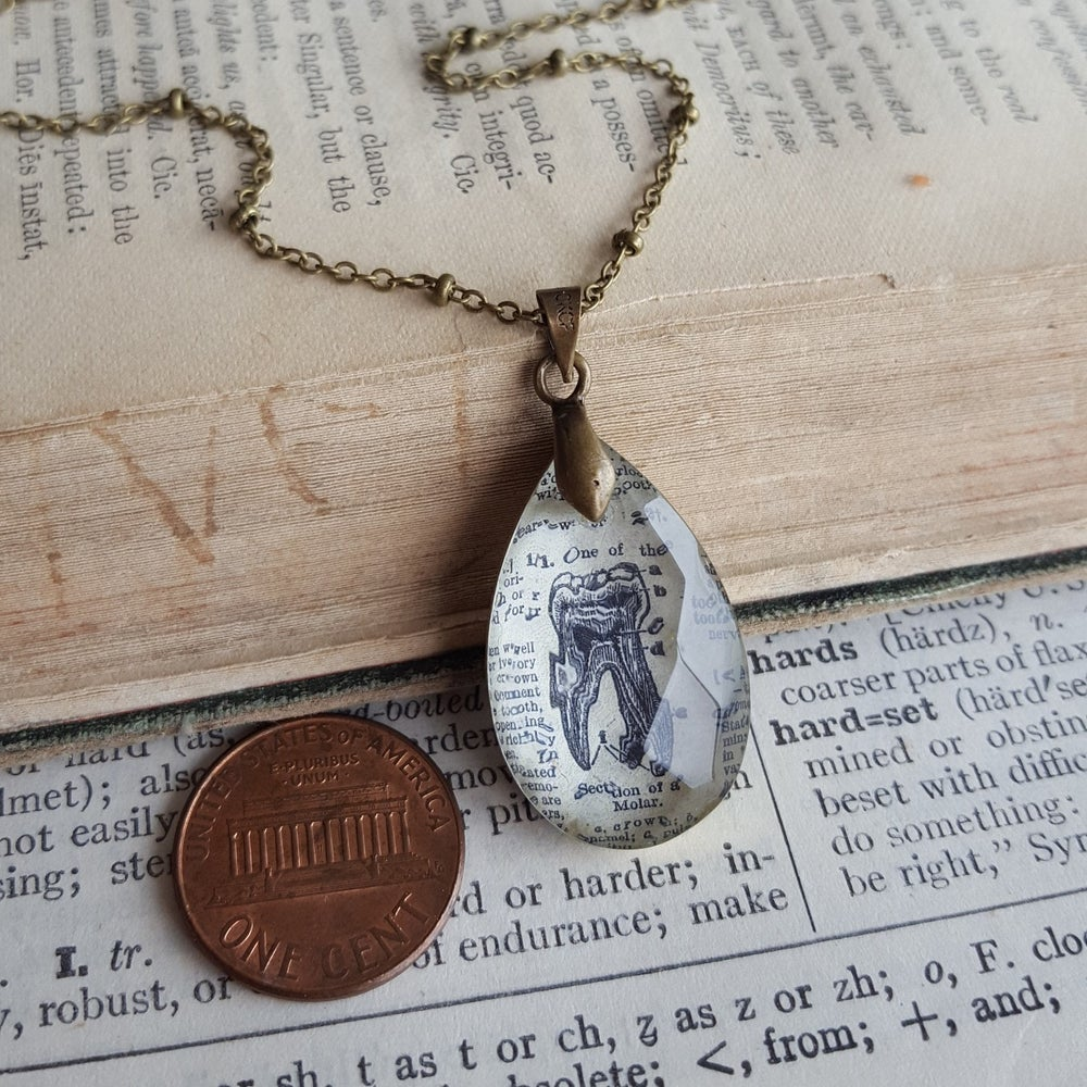 Image of Petite Salvaged Chandelier Crystal Vintage Tooth, Molar Pendant Necklace