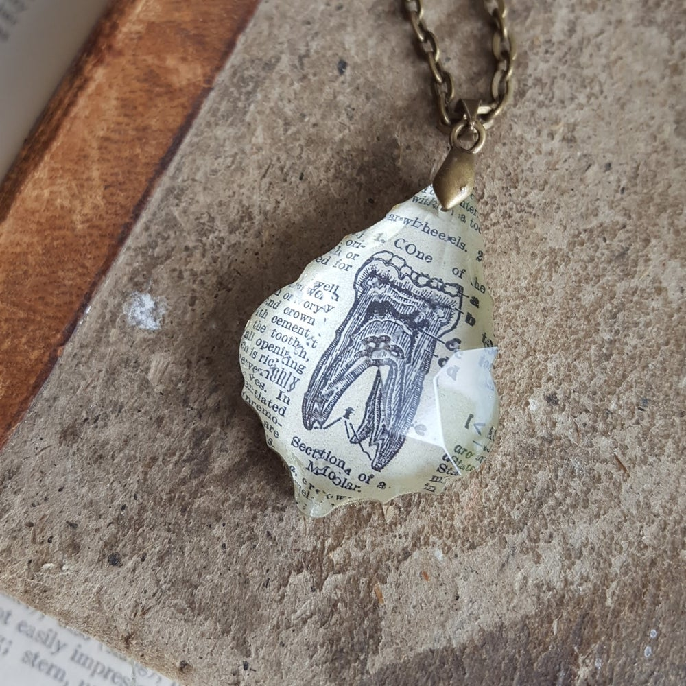 Image of Molar Tooth Vintage Medical Text Book Illustration Pendant Necklace