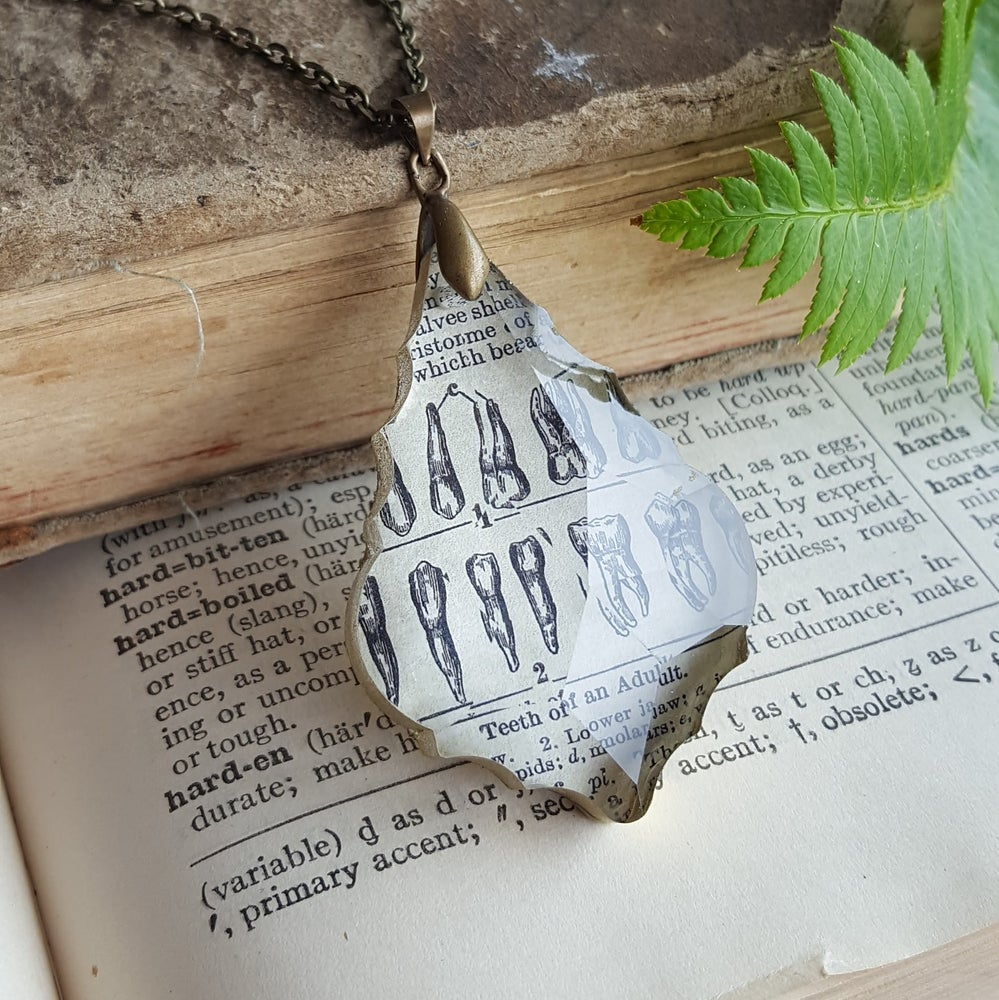 "Image of ""Teeth Of an Adult"" Vintage Medical Page & Chandelier Crystal Necklace"